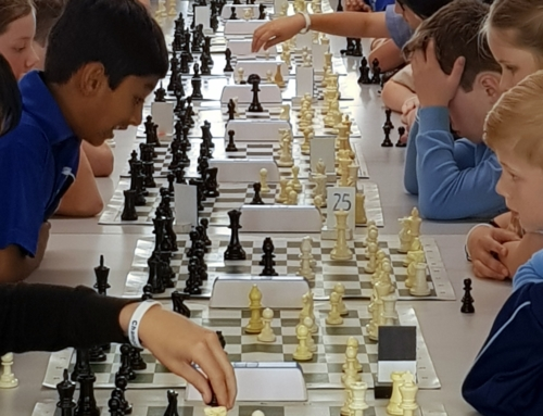 Chess Club 2019 Review