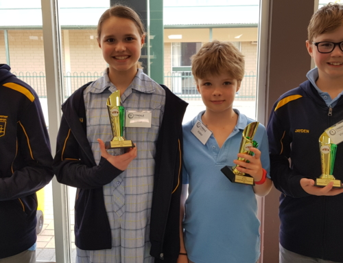 Redeemer comes 3rd in SA Chess State Finals